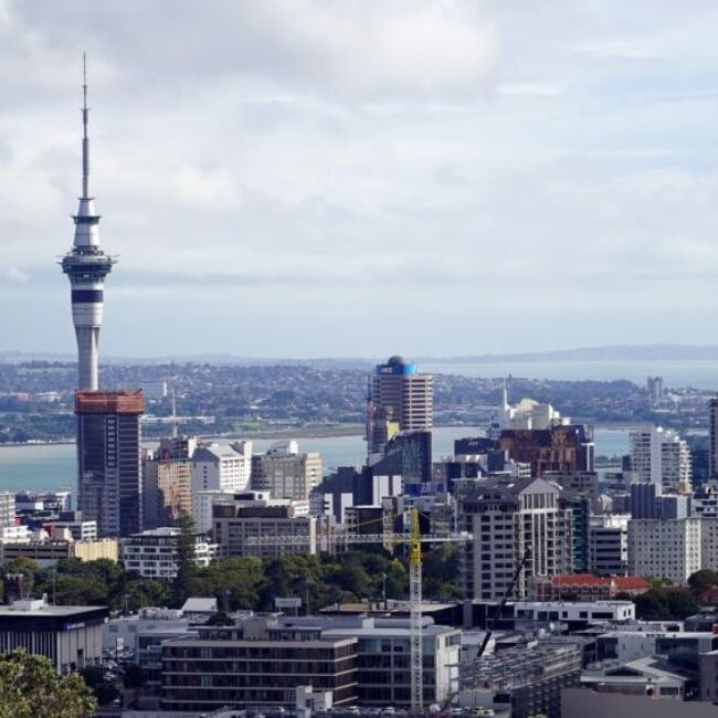 Forensic-Building-Services-Auckland